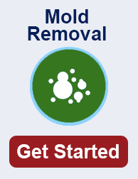 mold remediation in Colorado TN